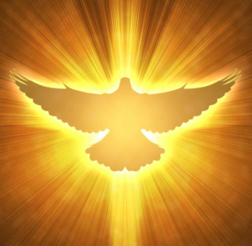 holy-spirit-dove
